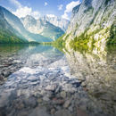 Obersee: Clear Water